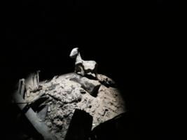 CONCOURS PHOTO : LAUREAT MARS 2020